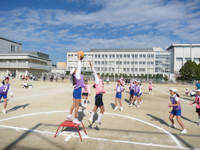 ポートボール2014-1